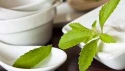 Auch der Süßstoff Stevia kann Zähnen schaden