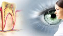 Prothese aus Zahnwurzel ermöglicht Blinden das Sehen