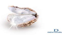 Faszinierende Natürlichkeit in Bracketform: discovery® pearl