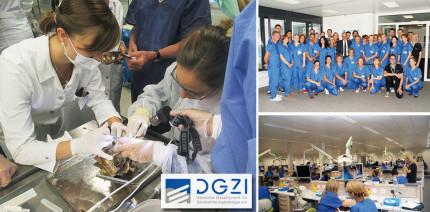 Curriculum Implantologie der DGZI: Jetzt für 2018 anmelden!