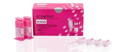 FujiCEM 2
