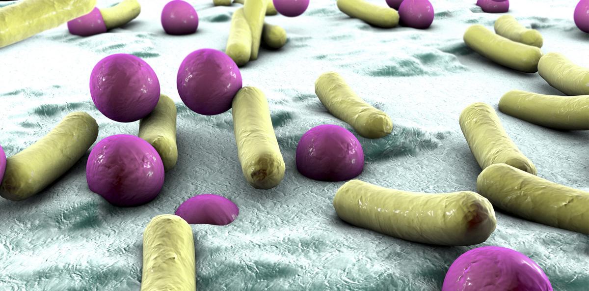Implantate mit antibakterieller Beschichtung für bessere Osseointegration entwic