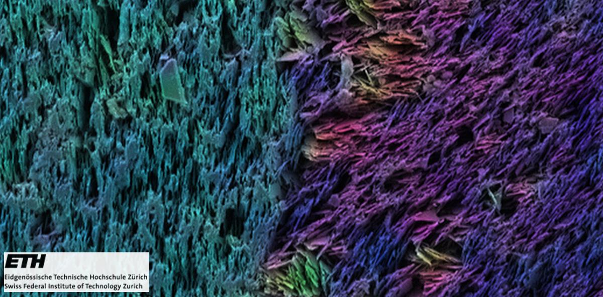 Biomimetischer Zahnersatz