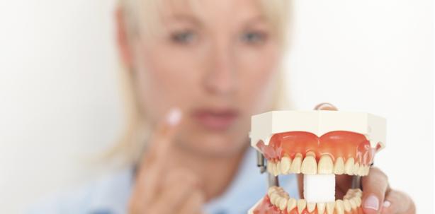 Dentalhygienikerinnen im EU-Fokus