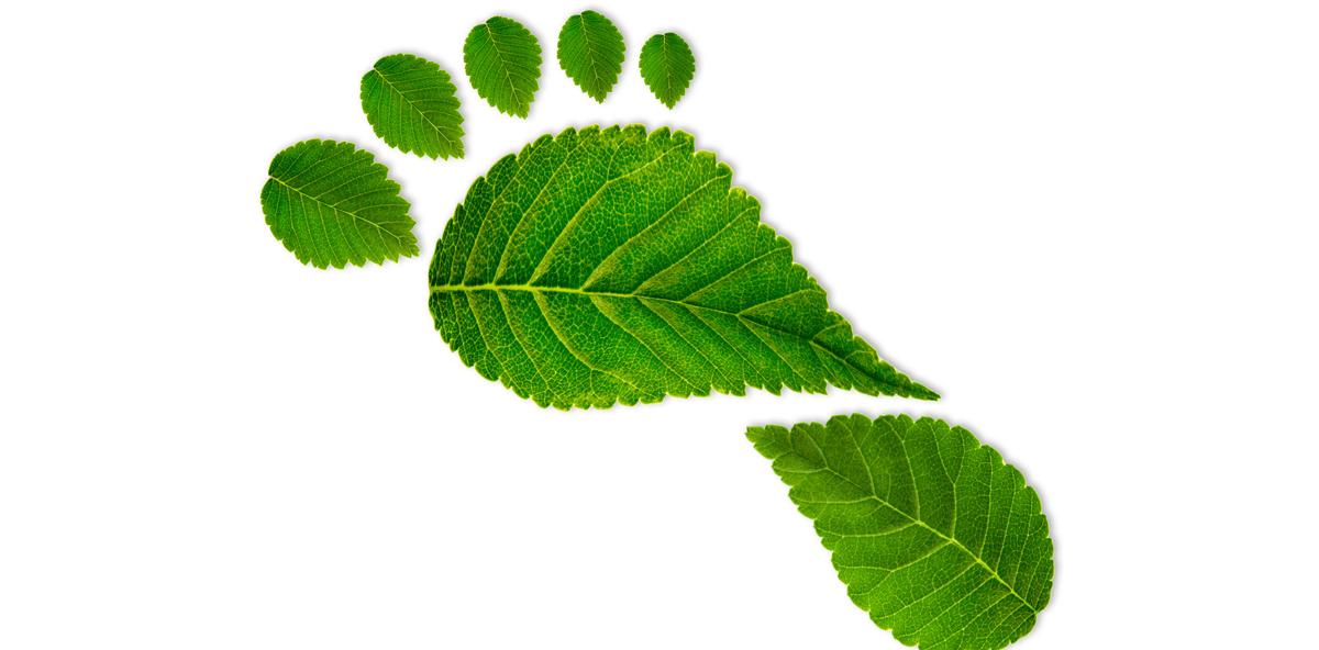 Den ökologischen Fußabdruck im Praxisalltag verkleinern