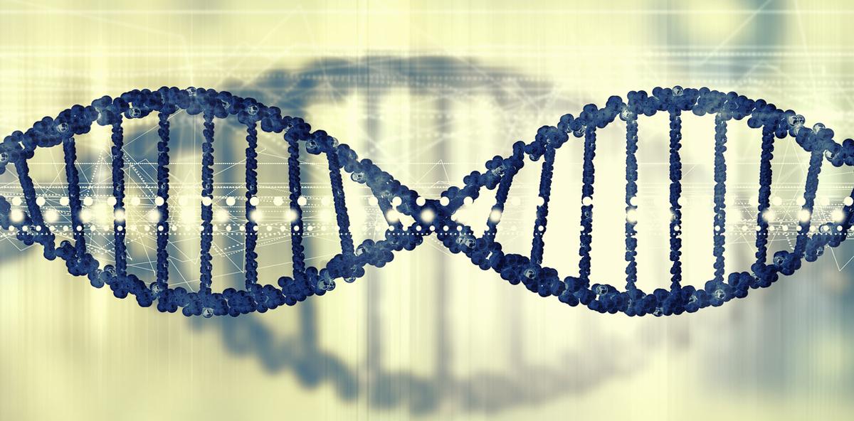 Gene für Zahnmerkmale entschlüsselt