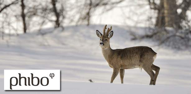 2. Phibo-Symposium: Jagdreise nach Polen