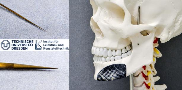 Rechtliche Bedingungen der endodontischen Behandlung