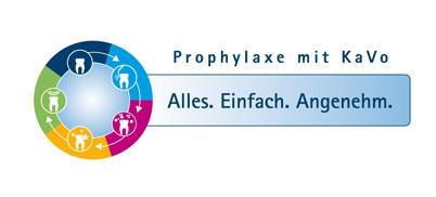 Prophylaxesystem