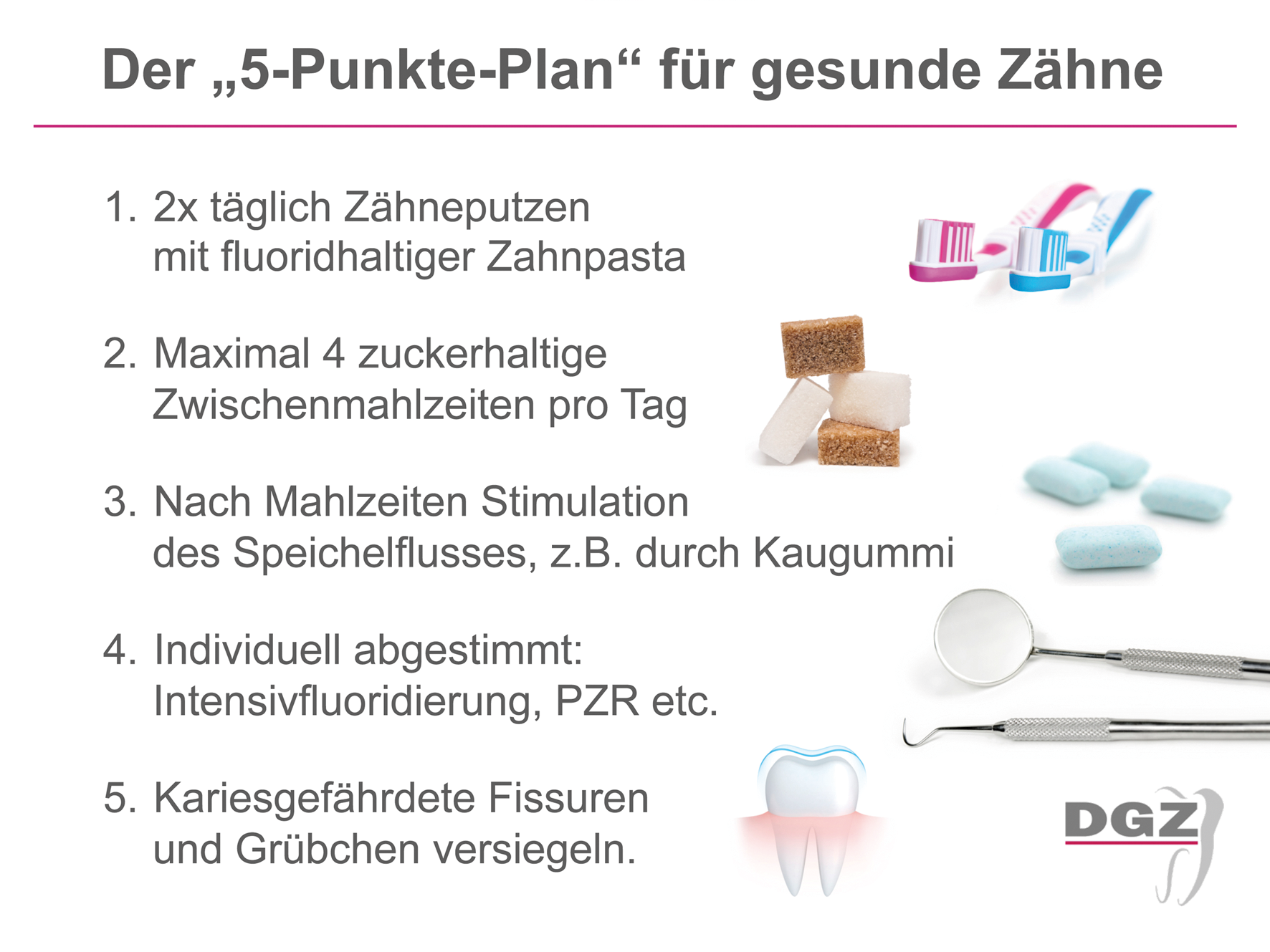 5-Punkte-Plan